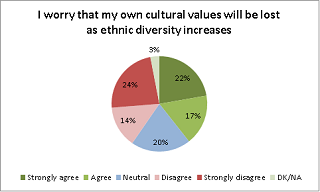 I worry that my own cultural values will be lost as ethnic diversity increases