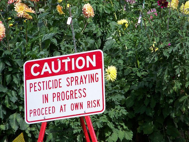 Caution, Pesticides by https://www.flickr.com/photos/jz909/