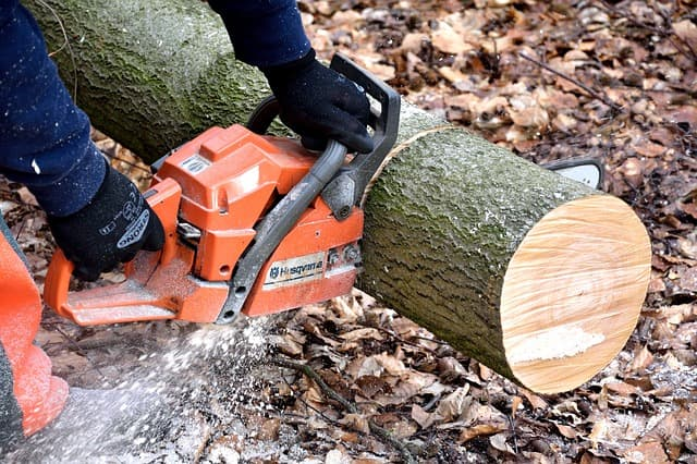 Chainsaw via https://pixabay.com/photos/cutting-wood-lumberjack-chainsaw-2146507/