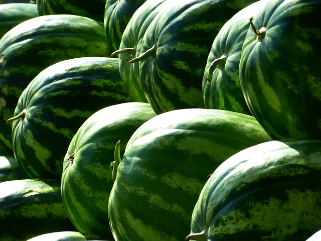 Melons via https://pixabay.com/en/melons-water-melons-fruit-green-197025/